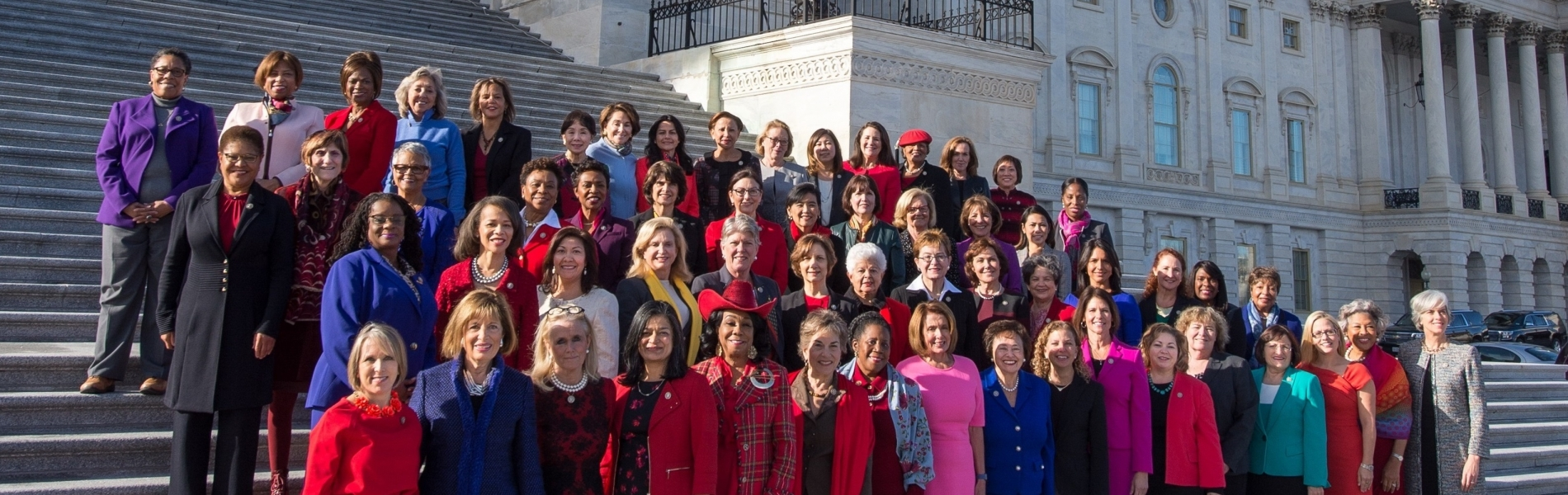 Democratic Women of the 115th Congress